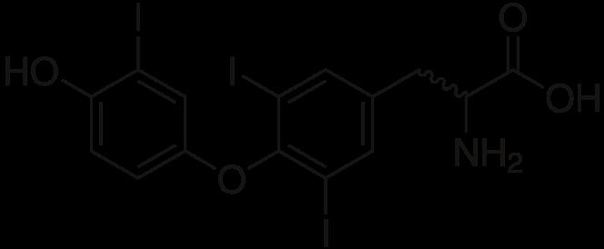 Aktywny hormon tarczycy