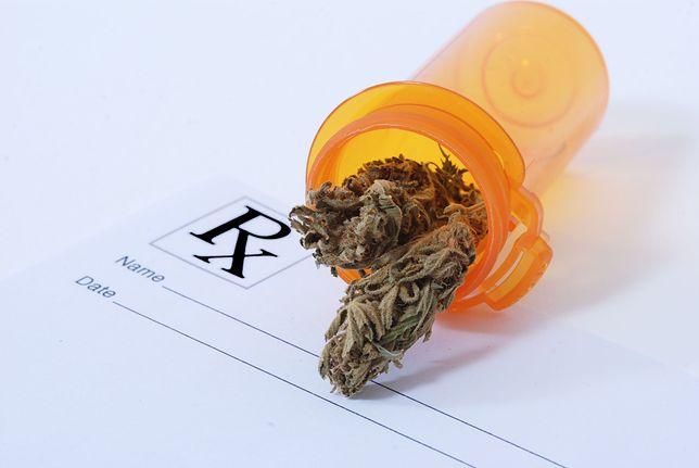 Marihuana medyczna już za miesiąc w polskich aptekach. Receptę może wystawić każdy lekarz