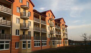 Skąd hossa na rynku pierwotnym mieszkań?