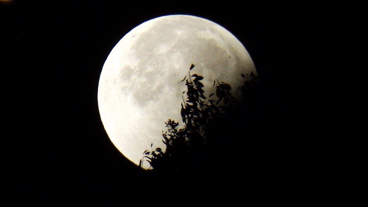 Półcieniowe zaćmienie Księżyca i spadające gwiazdy. Kiedy to zjawisko zobaczymy w lipcu?