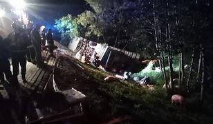 Świętokrzyskie. Niestety w wypadku poza kierowcą ucierpiało ponad 40 zwierząt