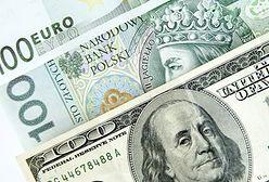 Kurs euro prawie taki sam jak dolara. Waluty zrównają się do końca roku?