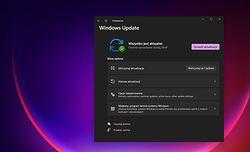 Windows 11: actualizare majoră o dată pe an, patch-uri lunare neschimbate