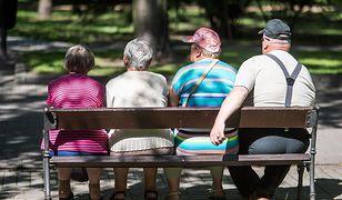 Dużo starszych osób i niewiele dzieci to coraz częstszy widok w parkach