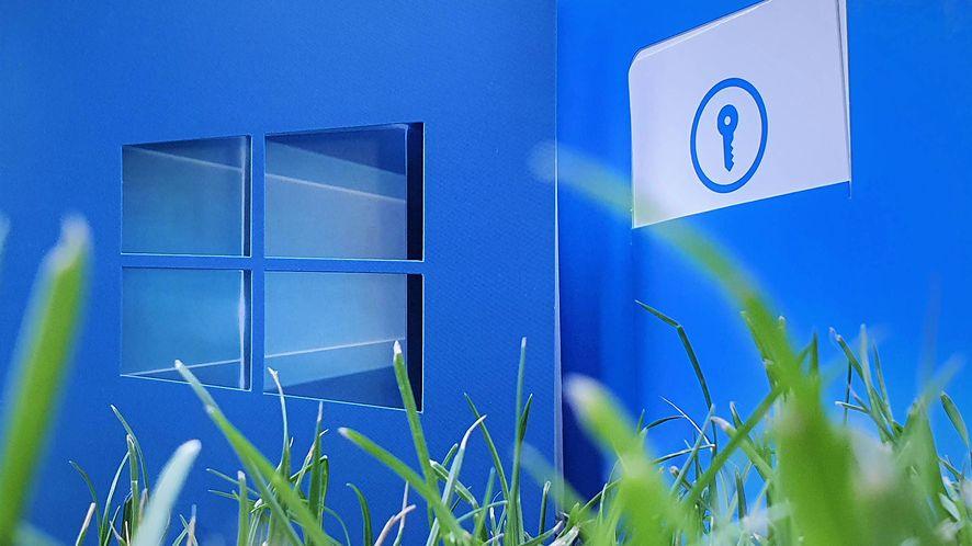 """Najnowsza wersja Windows 10 działa już w co trzecim komputerze z """"dziesiątką"""", fot. Oskar Ziomek"""