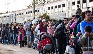 Meksyk: zaginęli imigranci z karawany. Honduras prosi ich rodziny o kontakt.
