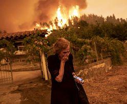 """""""Czerwony alarm dla ludzkości"""". Mówi o tym cały świat. Miażdżący raport IPCC"""