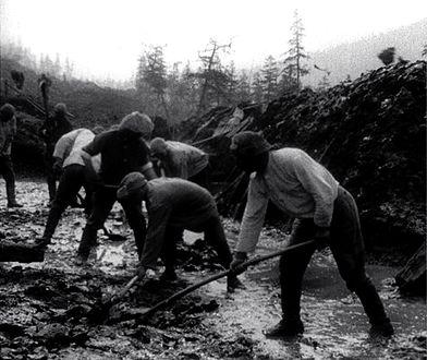 Kołyma, więźniowie gułagu budują drogę