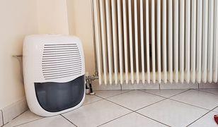 W domach, w których problem z podwyższonym poziomem wilgotności występuje regularnie, pomocne okażą się osuszacze powietrza.