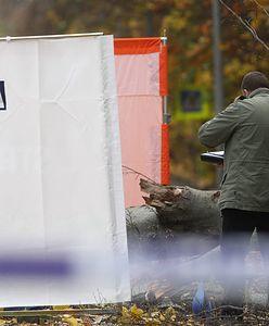 Auto wbiło się w drzewo. Dwóch zabitych w Słupsku