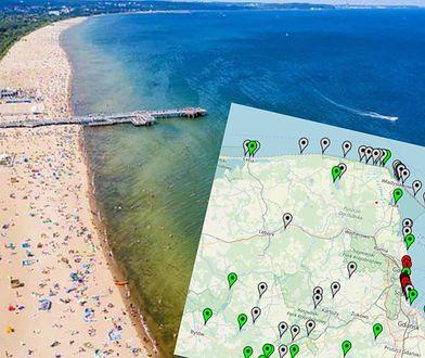 Sinice w Bałtyku. Złe wiadomości dla plażowiczów. Zamknięte pierwsze kąpieliska