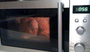 #dziejesięnażywo: Eksperymenty z kuchenką mikrofalową. Czego nie należy do niej wkładać.