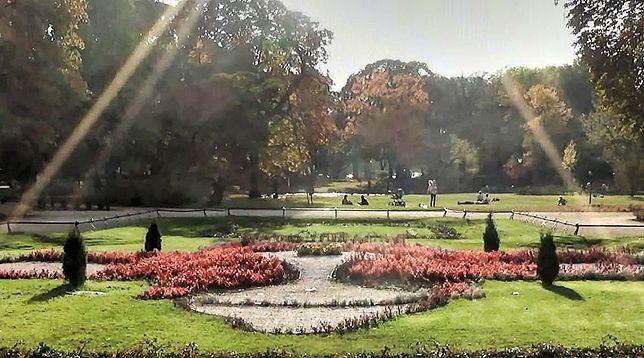 Jesień w Ogrodzie Krasińskich [WIDEO]