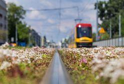 Warszawa. NaBielanach wykoleił się tramwaj