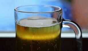 Żywiec zaproponuje Polakom zupełnie nowe piwa? Eksperymentalny browar