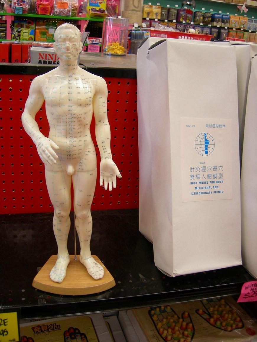 Akupunktura - specjalny manekin