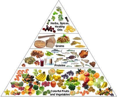 Schemat piramidy żywienia