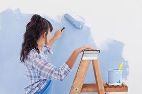 Samodzielne malowanie ścian krok po kroku
