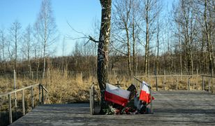 Miejsce katastrofy samolotu prezydenckiego Tu-154M w Smoleńsku