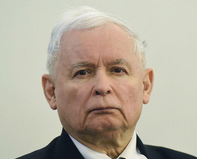 Jarosław Kaczyński w poniedziałek był w sądzie ws. Zbigniewa Stonogi