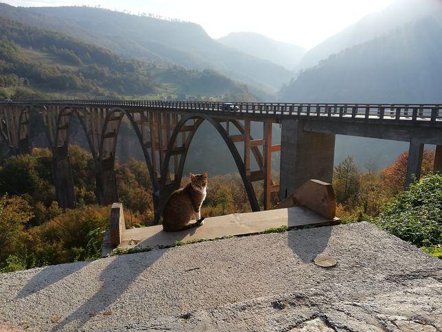 Dzika i porażająco piękna natura. Oto nieodkryta przez turystów Czarnogóra
