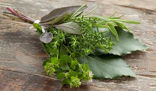 Zielarstwo jako jedna z form leczenia znane jest od wieków