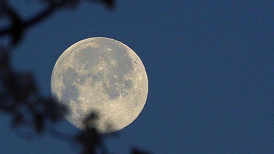 Pale Moon 27.6 dostępny. Dobry wybór dla użytkowników rozszerzeń legacy