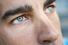 Budowa oka - twardówka, rogówka, naczyniówka, siatkówka, soczewka, tęczówka, nerw wzrokowy, ciało szkliste, spojówka