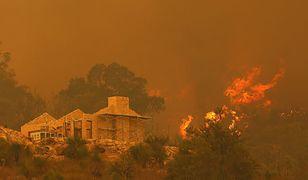 Australia. Strażacy walczą z ogromnym pożarem na przedmieściach Perth