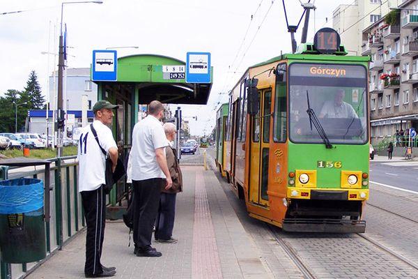 ZTM szuka osoby, która zwiększy punktualność autobusów i tramwajów