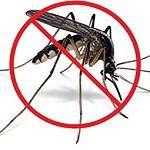 Floryda wykorzysta drony do walki z komarami