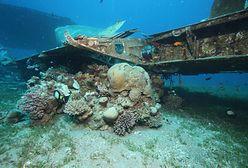Sztorm uderzył w rejon Zatoki Akaba. Zniszczył sztuczną rafę koralową