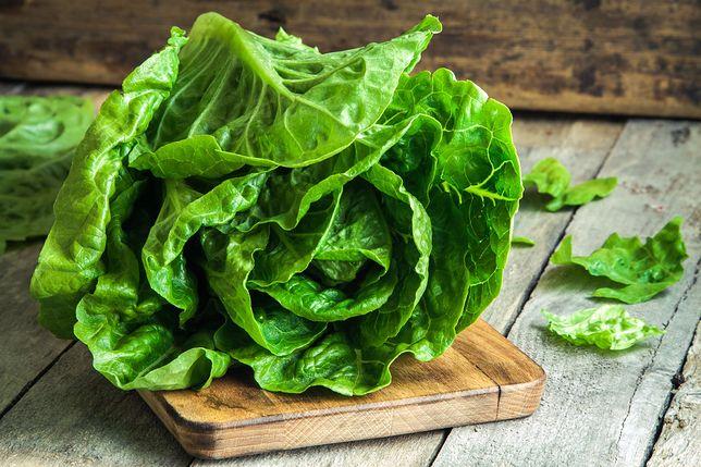 Zielona sałata niczym wiosna kusi swoim wyglądem, stanowi dekorację stołów oraz jest podstawowym elementem zdrowej diety. Przepisy z sałatą