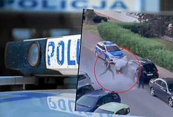 Warszawa. Chciał przejechać 7-latka. Policjantów potraktował gaśnicą. Jest nagranie