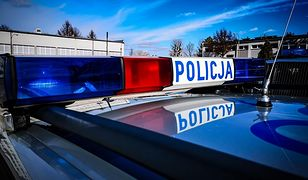 Do wypadku doszło na trasie Lublin-Warszawa