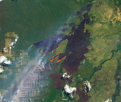 Amazonia płonie. Zdjęcie z satelity