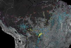 Zdjęcie NASA odsłania okrutną prawdę. Zeszłoroczne pożary Amazonii były znacznie poważniejsze