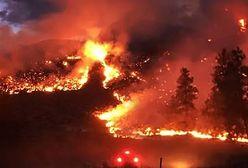 Amazonia płonie. Liczba pożarów jest większa niż w ubiegłym roku