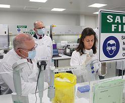 Koronawirus. AstraZeneca zawiesza prace nad szczepionką. WHO komentuje