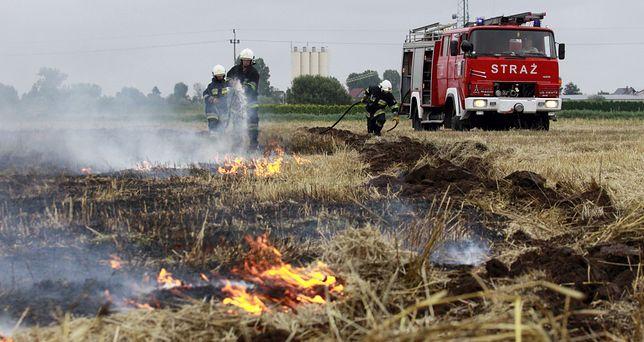 Szyfin: Tragiczny finał gaszenia pożaru zboża.