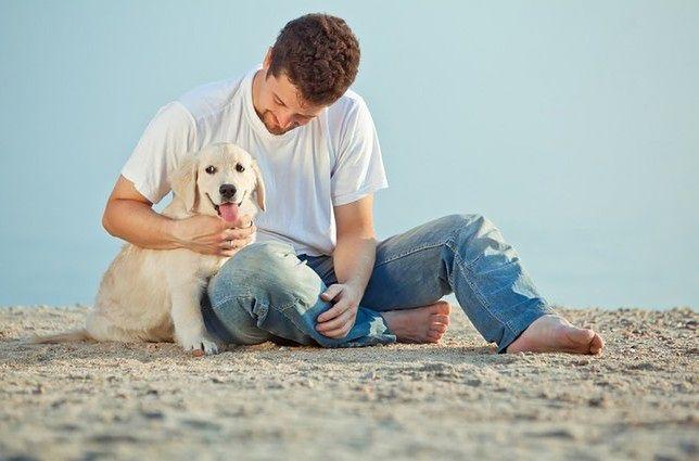 Zwierzęta łagodzą objawy depresji