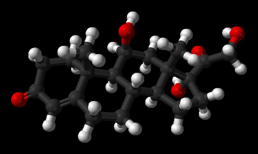 Schemat budowy cząsteczki kortyzolu