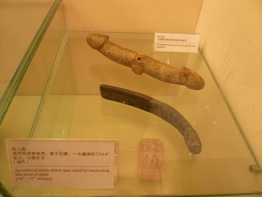 Muzeum seksu - sztuczny penis