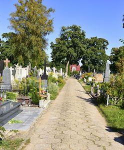 Płońsk. Makabryczne odkrycie na cmentarzu, znaleziono zwłoki noworodka
