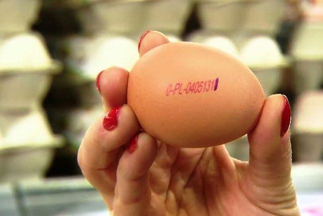 Ile jajek dziennie możemy zjeść, czyli co warto wiedzieć o jajku?