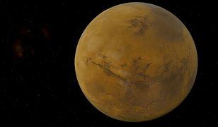 Mars. Czy istnieje życie na Marsie? Niektórzy nie mają wątpliwości
