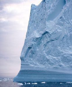 Grenlandia. Martyna Wojciechowska zachwyca się największym na świecie parkiem narodowym. Internauta wytyka jej błąd
