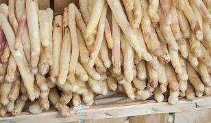 Szparagi białe – kalorie, właściwości, jak gotować, jak przyrządzić