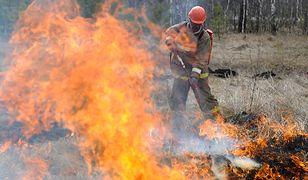 Strażacy podpalali lasy, bo chcieli sobie dorobić. Przez nich odnotowano rekord