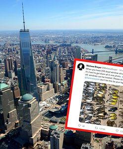 """Setki martwych ptaków na ulicach Nowego Jorku. """"To przytłaczający widok"""""""